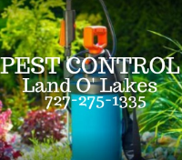 Jamaica Directory Pest Control Land O Lakes in Land O' Lakes FL
