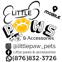 Little Paws & Accessories