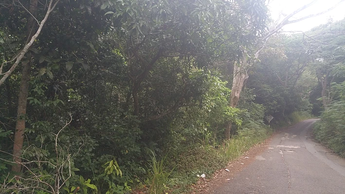 Residential Lot located at 7A Poinciana Drive in the St. Andrew