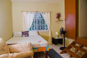 Ackee Tree Sea View Villa Photo Album