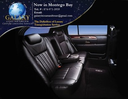 Galaxy Leisure and Tours Limited - Let us Chauffeur you to the finest spots in Jamaica